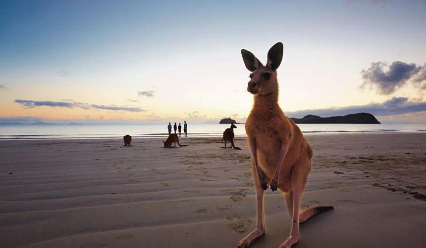Regional QLD: Mackay